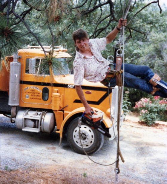 Scott Anderson, harnessed in a tree, learning the business before Anderson Tree Company, Elverta, CA